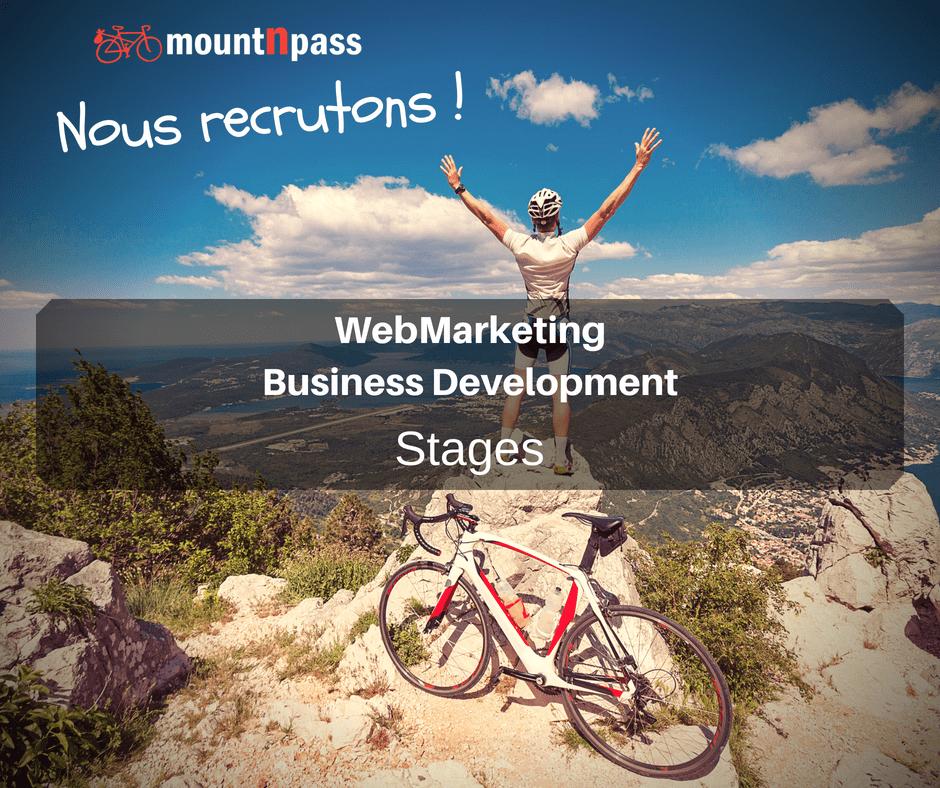 WebMarketing & Business Development