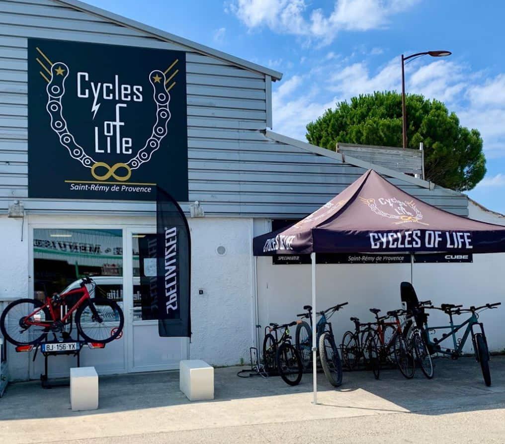 Cycles of Life  Saint-Rémy-de-Provence